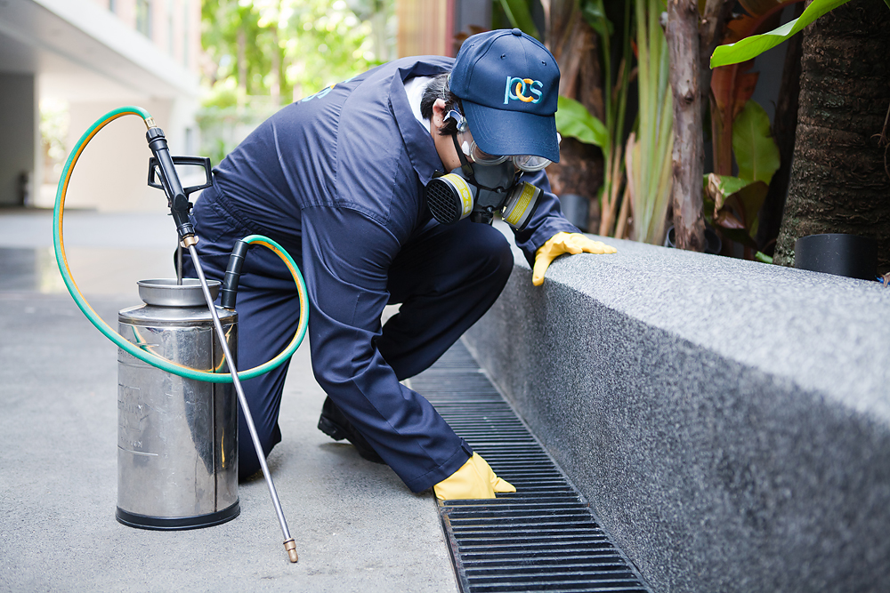 Telltale Signs that Your Household Needs Exterminators
