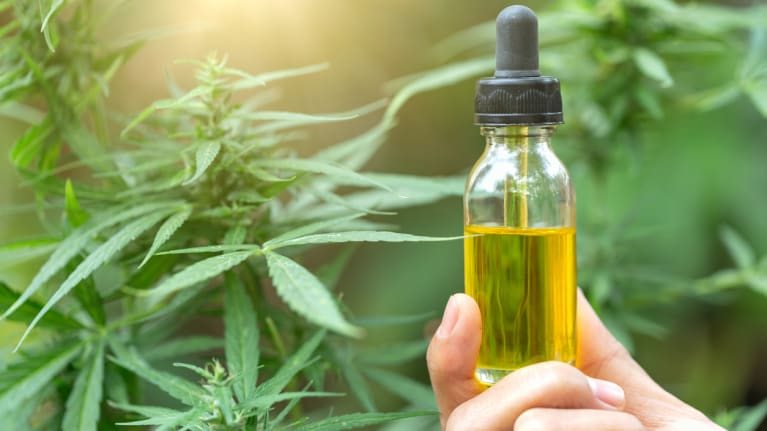 What is meant by CBD oil and its uses?